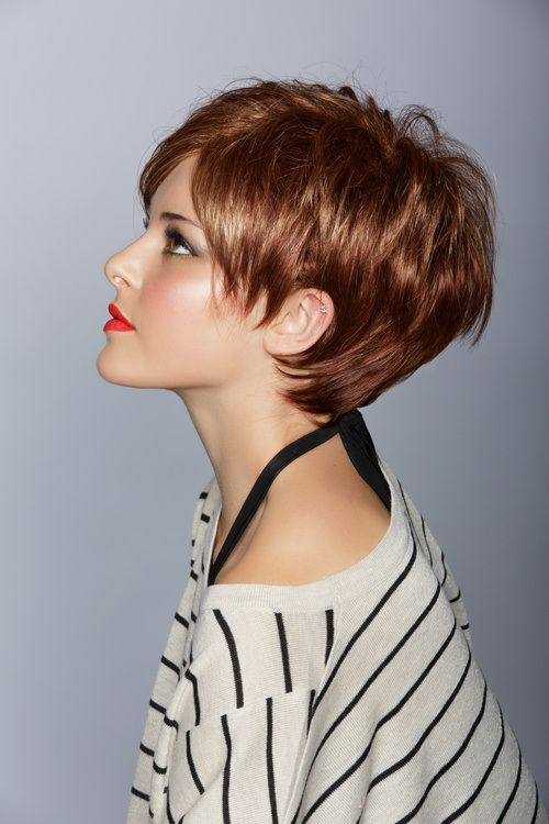 thick brown hair growing pixie