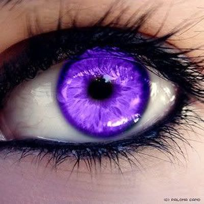Image result for purple eyes