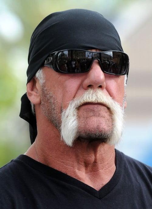 Hulk Hogan horseshoe mustache