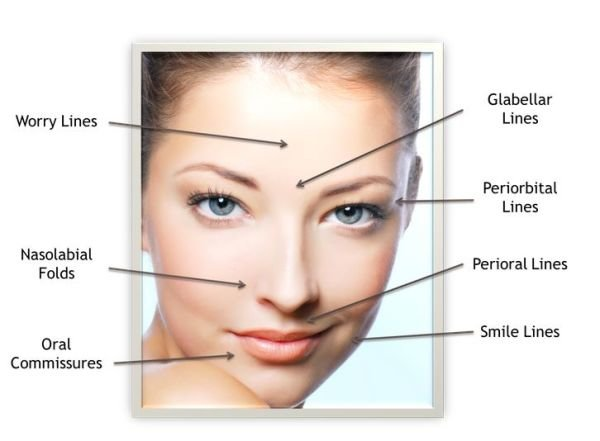 Skin Rejuvenate