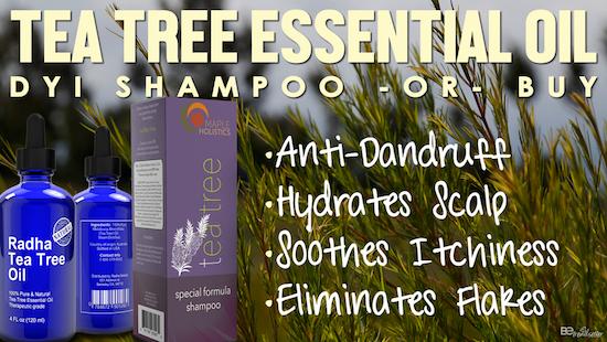tea tree shampoo for dandruff