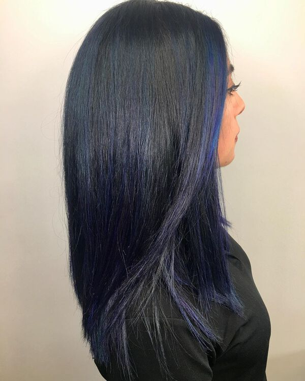 Berry Blue Black Hair Color
